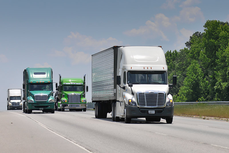 Transportation Business For & Domestic Trucking Transportation Industry